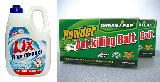 Products to get rid of ants