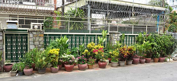 Phnom Penh terrace garden